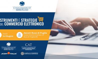 """Strumenti e Strategie del Commercio Elettronico""."